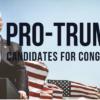 Pro-Trump-Candidates-For--29824aa456c7ba91f05509bc1971da5eb4c5f838
